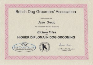bichon-higher-diploma-2